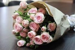 Picture of Pink Roses Bunch (15 nos)